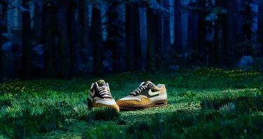"""Check de nieuwe Nike Air Max 1 Susan, de sneaker die geïnspireerd op """"Missing Link"""""""